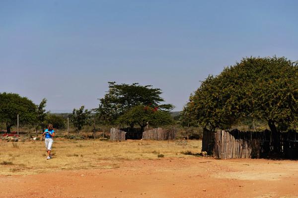 野性肯尼亚 东非大裂谷图片