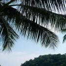 停泊岛攻略图片