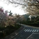 釜山攻略图片