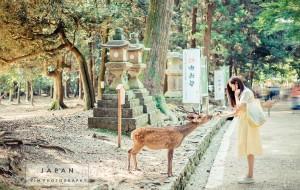 【东京图片】日本-抹茶绿的夏天 逛在东京 玩在关西 如画镰仓