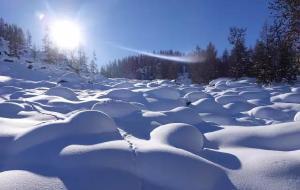 新疆娱乐-阿尔泰山野雪公园