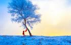 私家定制团 / 冬季东北冰雪奇缘6天定制之旅(哈尔滨+中国雪乡+亚布力滑雪+镜泊湖+长白山+雾凇岛)