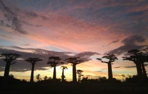 【马达加斯加图片】我去     马达加斯加