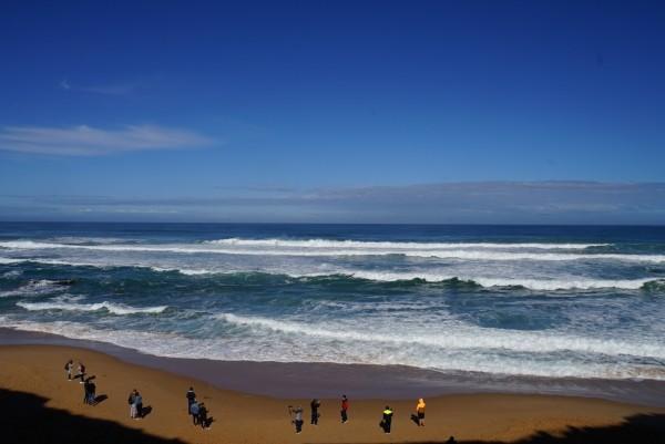 四月的天,澳大利亚:悉尼,跳伞,心型礁,自