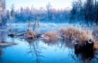 冬日经典 魔界+长白山北坡天池 独立包车一日游 (万达度假区/松江河镇起止)