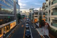 【大c in Tokyo】夏末的和声,我和东京的二度约会!