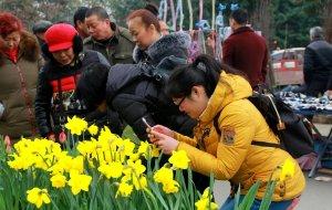 【都江堰图片】大美都江堰之春台盛会