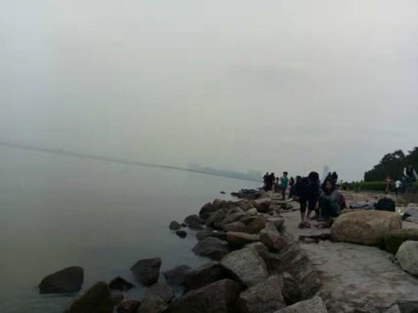 佛山 游记        深圳红树林可以说是盛名远播,现在来深圳的海内外游