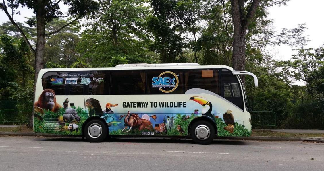 酒店至新加坡动物园巴士接送