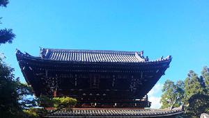 夏日游古寺