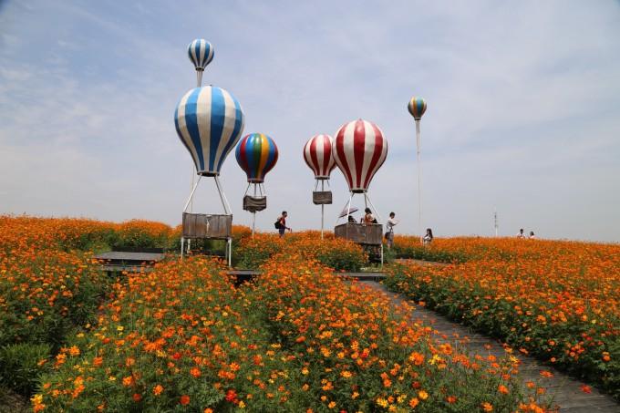 京沪高铁旁的花海—苏州半岛薰衣草庄园