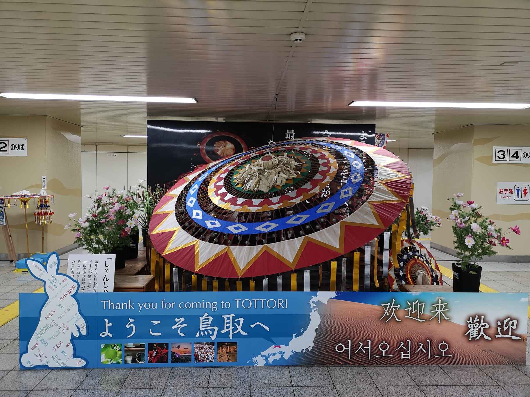 朝圣柯南,动漫迷日本11天自由行流水账(DAY5 7月28日)(下)~~花火大会的完美错过~~_游记