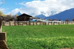 坐上班车游西藏:波密桃花沟&嘎朗湖
