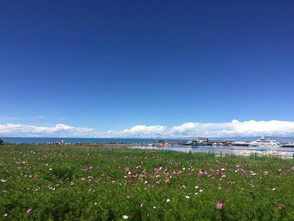 敦煌酒泉的戈壁滩,大自然的神奇造化,心存敬畏!