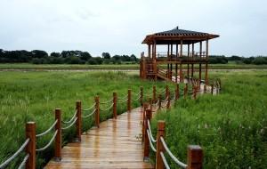 【佳木斯图片】黑瞎子岛——湿地    湿地公园     俄罗斯驻北代岛哨所遗址