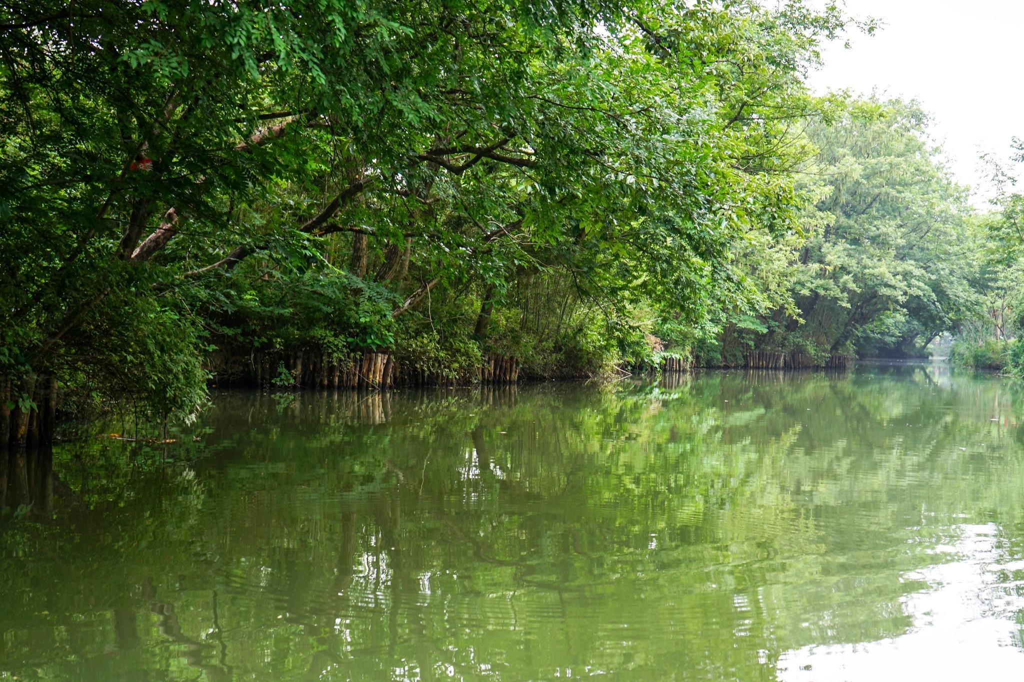 西溪湿地福堤景色如何,西溪湿地福堤有哪些福,西溪湿地福堤介绍