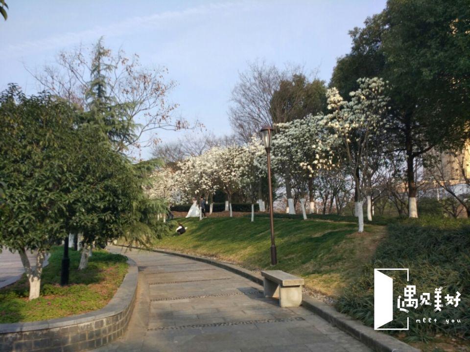 福田湿地公园
