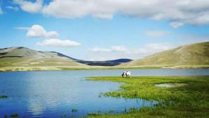 北疆:什巴尔库勒考古记(二)