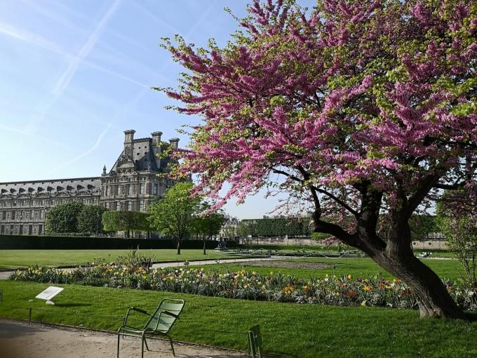 巴黎春天,一路美景