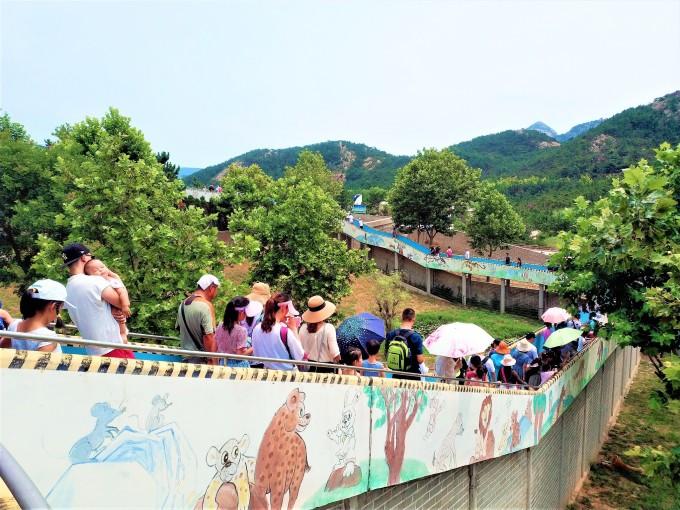 带着孩子去旅行 | 西霞口神雕山野生动物园