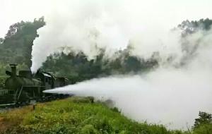 【乐山图片】世界上现在唯一还在运行的小火车,你坐过吗?