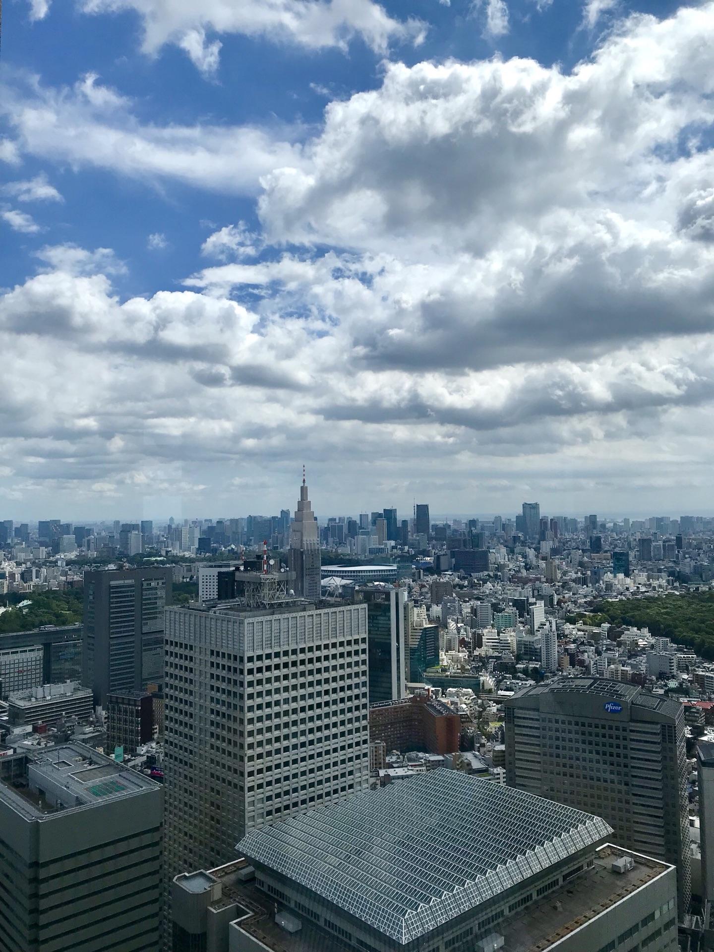 俯瞰东京城