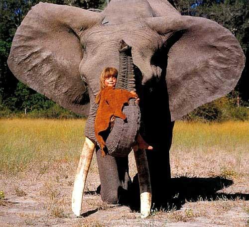 Tippi Degre在非洲