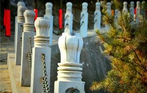 【韩城图片】我怀念的苍凉塞北--韩城司马庙