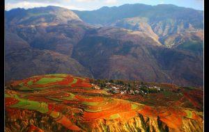 【东川图片】红土地,上帝打翻的调色板