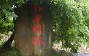 【湖州图片】卧虎藏龙地---最杭州之竹海