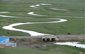 【沽源图片】端午--坝上沽源草原二日游