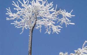 【衡山图片】狂风暴雪与明媚阳光的瞬间切换--衡山两日游