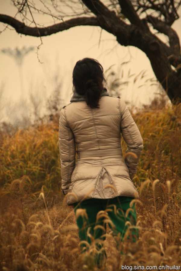 金河湾湿地公园踏秋图片