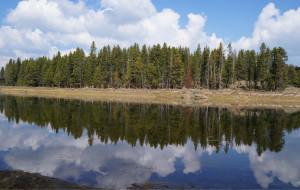 【黄石国家公园图片】2012年黄石公园我来了,你在哪?---自由行行程全记录,5天4夜