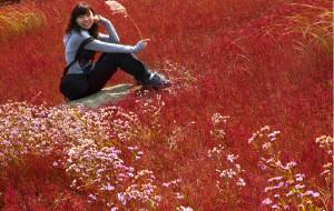 【锦州图片】2012国庆——笔架山、红海滩、止锚湾快乐自驾游