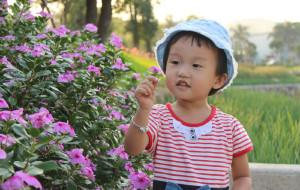 【沙湾古镇图片】20121021滴水岩森林公园+沙湾古镇一日游