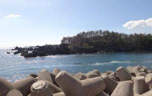 济州岛娱乐-太平洋码头&游艇