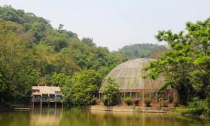 景洪野象谷热带雨林景区攻略,野象谷热带雨林景区门票 地址,野象谷热带 图片