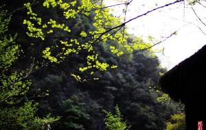 【石泉图片】中坝峡谷
