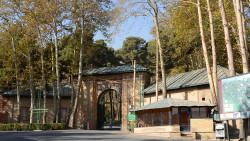 伊朗景点-萨德阿巴德王宫建筑群(Saad Abad Museum Complex)
