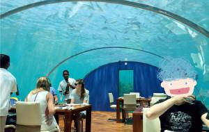 马尔代夫美食-港丽岛水下餐厅