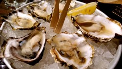 西雅图美食-Elliott's Oyster House