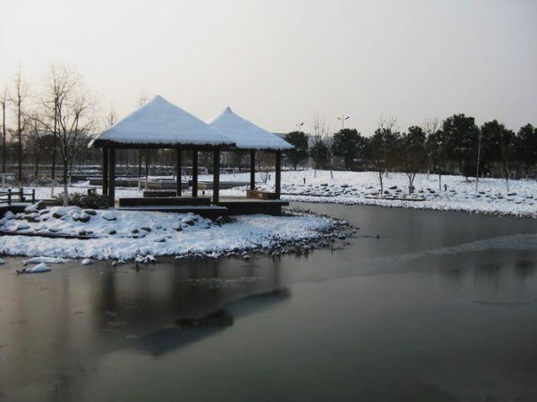 """这个时候发点苏州大学春天的照片,配合那句""""冬天来了,春天还会远吗?"""""""