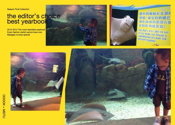 还看到了鲨鱼,捣捣还长大嘴巴学鲨鱼的大嘴巴怎么咬小动物的.