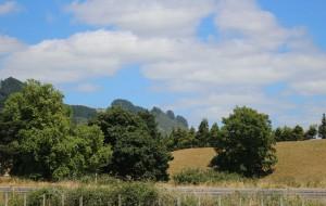 【罗托鲁瓦图片】新西兰罗托鲁瓦爱哥顿家庭农场实拍之二2014.2.21