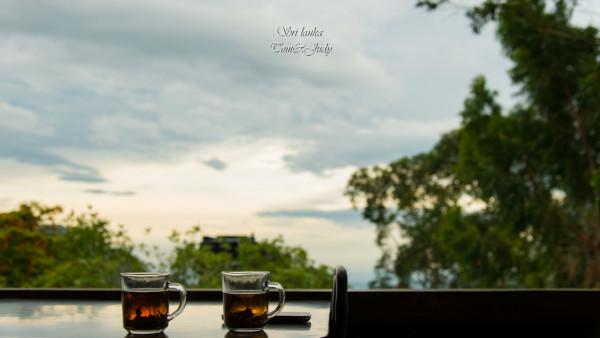 老婆泡的红茶,两个人一起,坐看庭前花开花落,笑望天边云卷云舒.