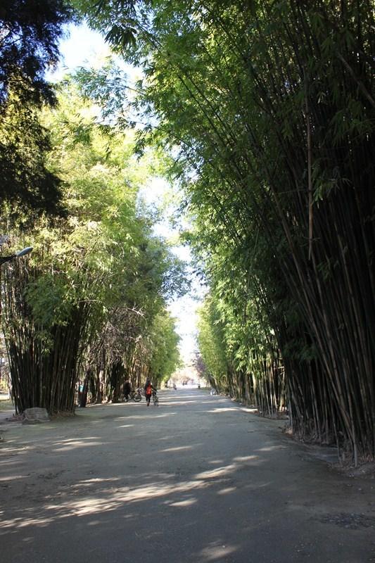 云南省旅游 洱海旅游攻略 徒步洱海——告别走马观花,发现别样菁华