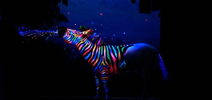 世纪金花夜光3D艺术展(PUZZLE台湾夜光3D展)