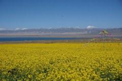 九月游青海湖  巴丹吉林沙漠 张掖 敦煌