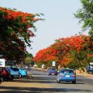 赞比亚攻略图片